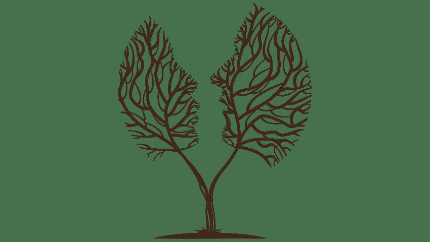 Αγχος - Αγχώδεις διαταραχές